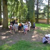 centre_de_loisirs_mysteres_arboretum