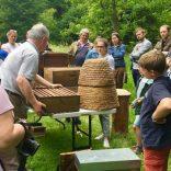 Rencontre avec les apiculteurs : Dimanche 14 juin